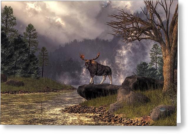 Moose In The Adirondacks Greeting Card by Daniel Eskridge