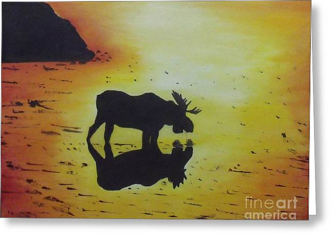 Moose In The Sunset Greeting Card by Debra Piro