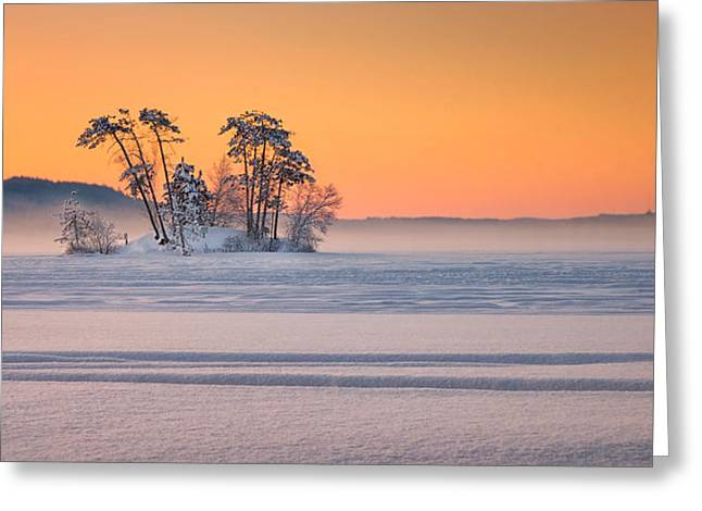 Moose Pond Winter Sunrise Greeting Card