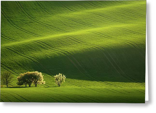 Moravian Waves Greeting Card