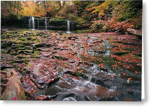 More Moss And Autumn Leaves Than Water Greeting Card