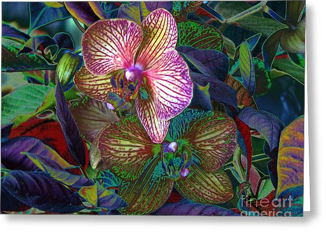 More Orchids Greeting Card by Doris Wood