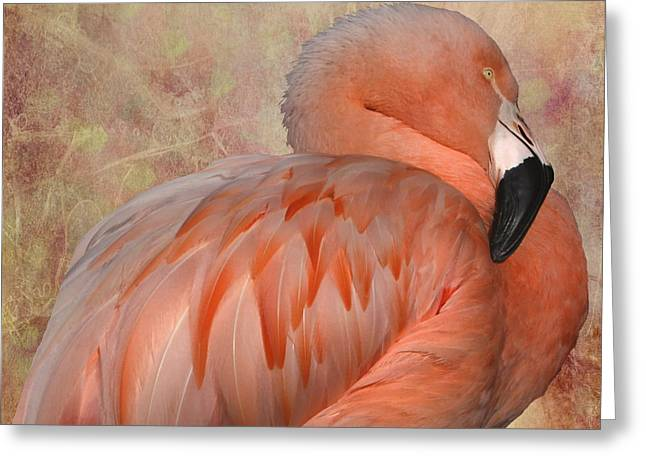 More Than A Lawn Ornament Greeting Card by Kandy Hurley