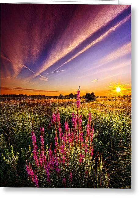 More Than Anything Else Greeting Card by Phil Koch