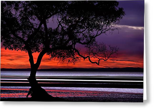 Moreton Bay View Greeting Card
