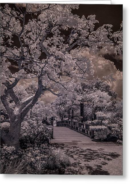 Morikami Gardens - Bridge Greeting Card