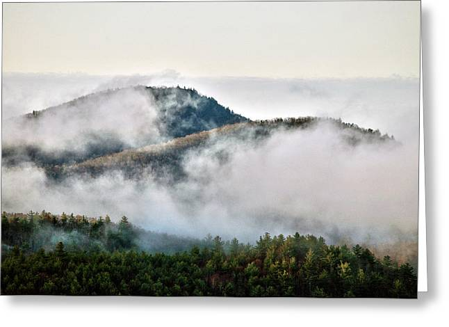 Greeting Card featuring the photograph Morning After The Storm by Allen Carroll
