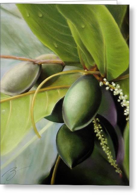 Morning Almonds Pastel Greeting Card by Ben Kotyuk