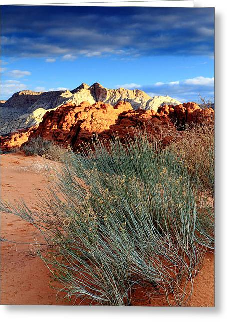 Morning At Snow Canyon State Park Greeting Card by Eric Foltz