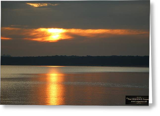Morning Beauty 3 Greeting Card by Paul SEQUENCE Ferguson             sequence dot net