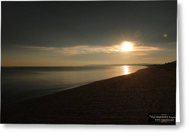 Morning Beauty 5 Greeting Card by Paul SEQUENCE Ferguson             sequence dot net