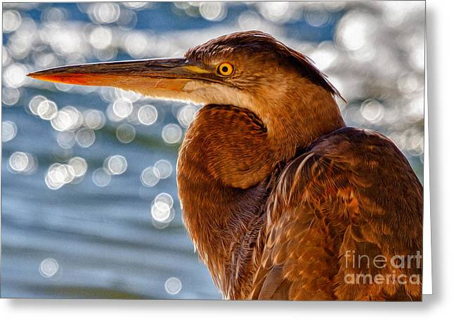 Morning Blue Greeting Card by Pam Vick