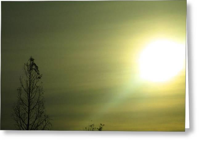 Morning Blur Greeting Card