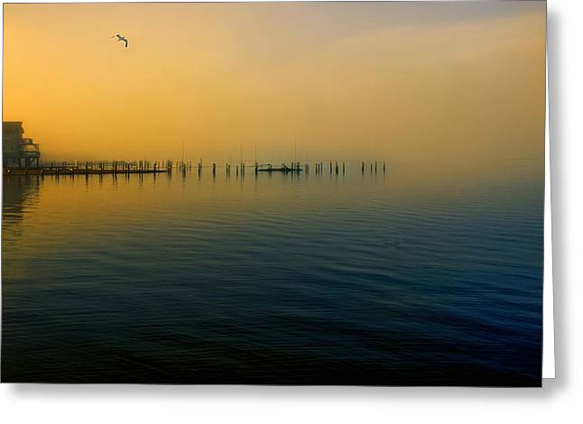 Morning Comes On The Bay Greeting Card