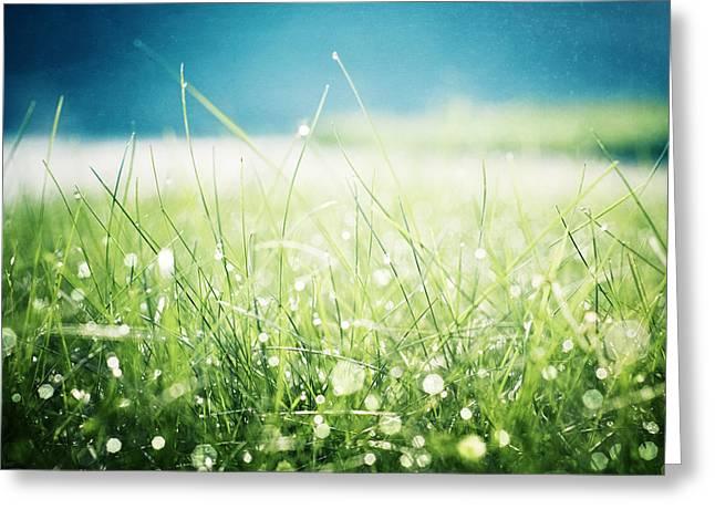 Morning Dew Greeting Card by Carolyn Cochrane