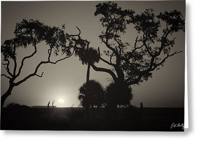 Morning Eclipse In Sepia Greeting Card by Phill Doherty