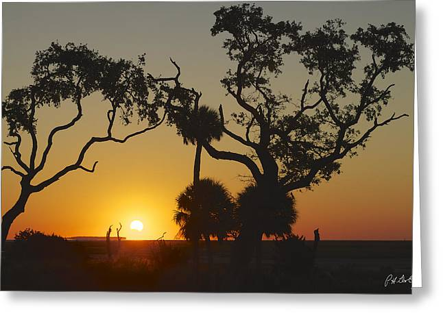Morning Eclipse Greeting Card by Phill Doherty