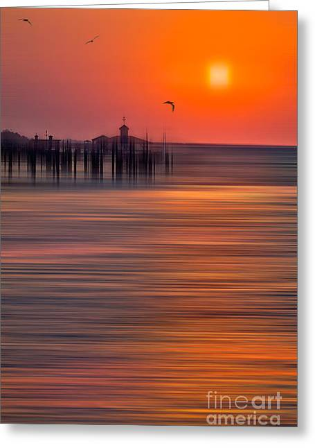 Morning Flight - A Tranquil Moments Landscape Greeting Card by Dan Carmichael