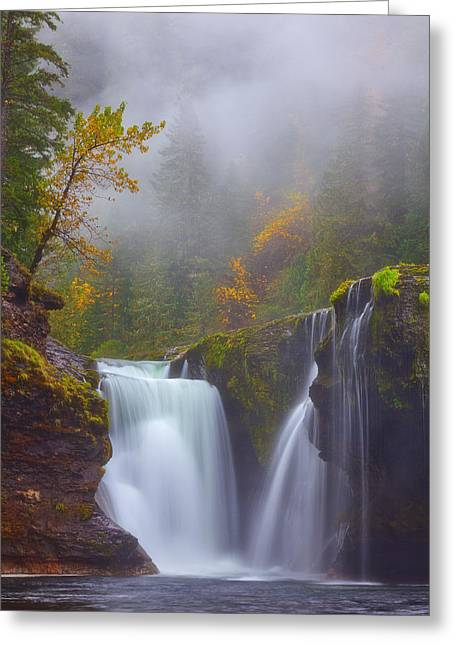 Morning Fog Greeting Card by Darren  White