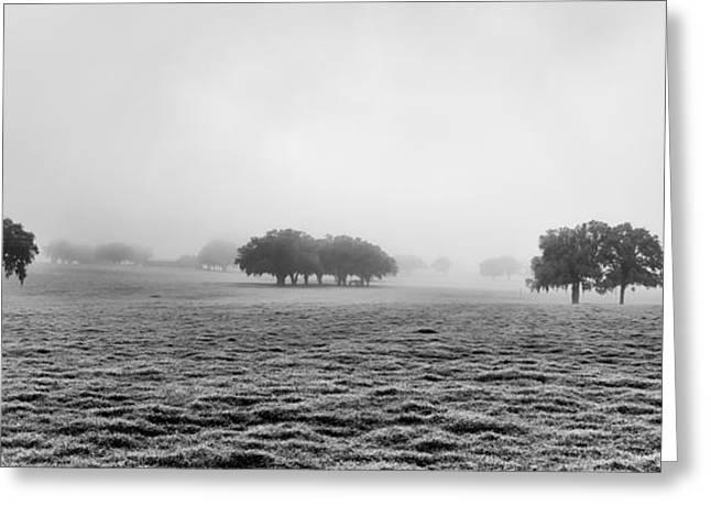 Morning Fog Greeting Card by Howard Salmon