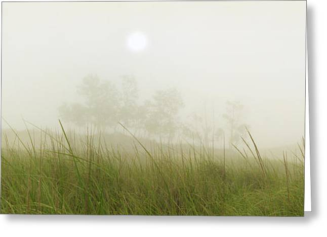 Morning Fog On The Dunes Greeting Card