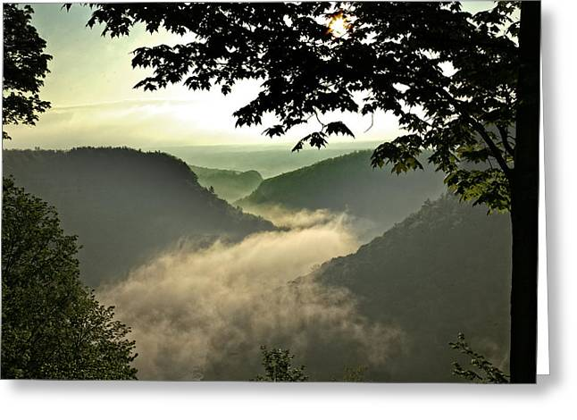 Morning Fog Greeting Card by Richard Engelbrecht