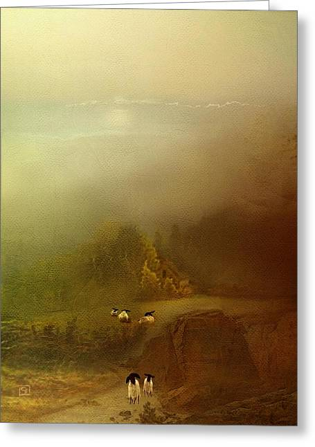 Morning Fog Sheep Greeting Card