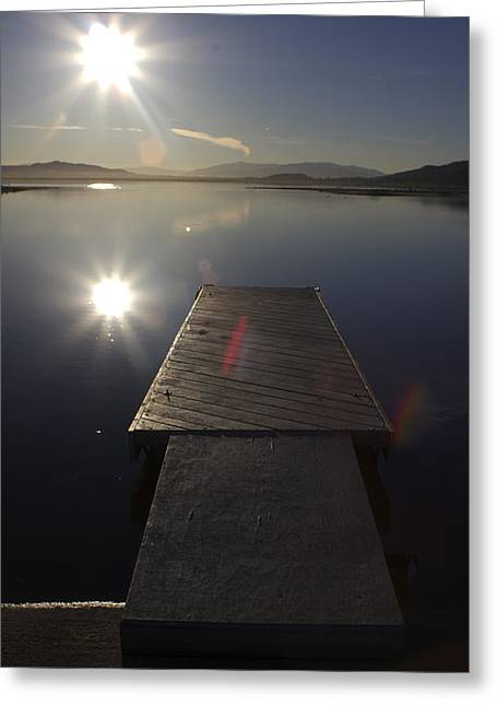 Greeting Card featuring the photograph Morning Glare by Richard Stephen