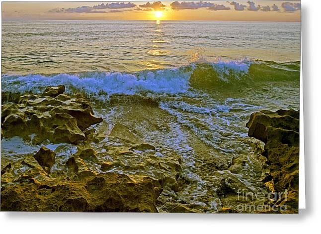 Greeting Card featuring the photograph Morning Glory by Larry Nieland