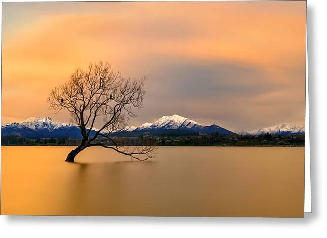 Morning Glow Of The Lake Wanaka Greeting Card