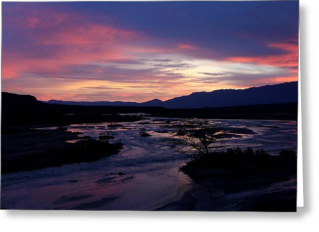 Greeting Card featuring the photograph Morning Glow by Tammy Espino