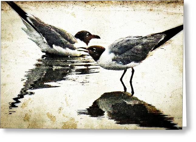 Morning Gulls - Seagull Art By Sharon Cummings Greeting Card