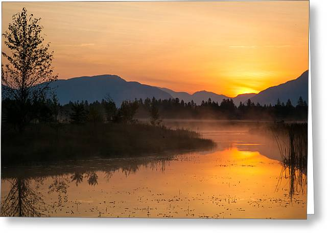 Greeting Card featuring the photograph Morning Has Broken by Jack Bell