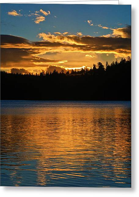 Greeting Card featuring the photograph Morning Has Broken by Sherri Meyer