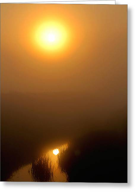 Morning Haze Greeting Card