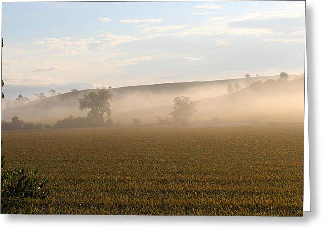 Morning In Iowa Greeting Card by Angie Phillips