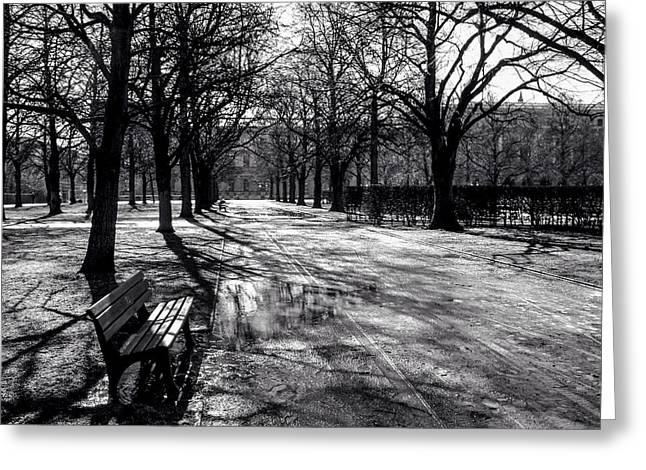 Greeting Card featuring the photograph Morning In The Hofgarten by Ross Henton