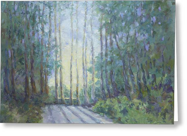 Morning In The Redwoods Greeting Card by Dena Cornett