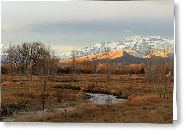 Morning In The Wasatch Back. Greeting Card