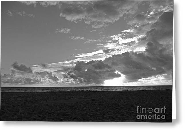 Morning Inspiration In Black And White Greeting Card by Vic  Mastis