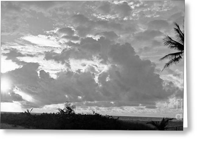 Morning Inspriation In Black And White Greeting Card by Vic  Mastis