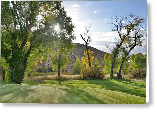 Morning Light At The Rolling Green Cc Greeting Card
