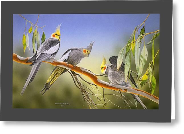 Morning Light - Cockatiels Greeting Card