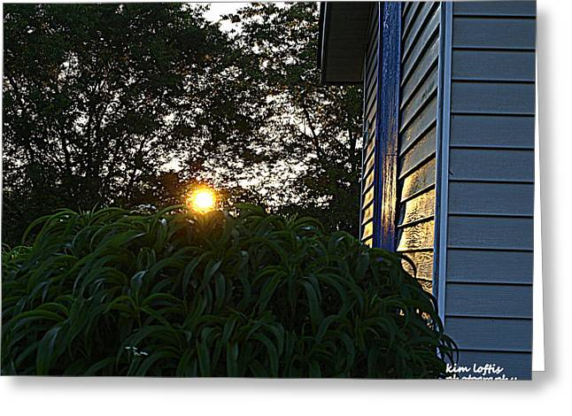 Morning Light  Greeting Card by Kim Loftis