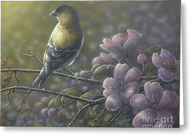 Morning Light Greeting Card by Ron Decker