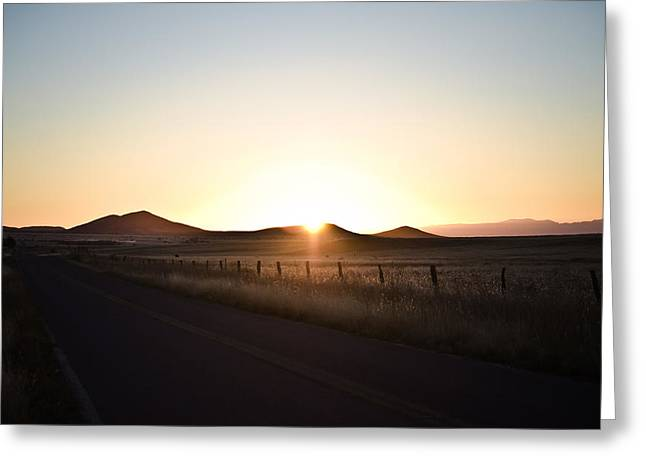 Morning Light Greeting Card by Swift Family