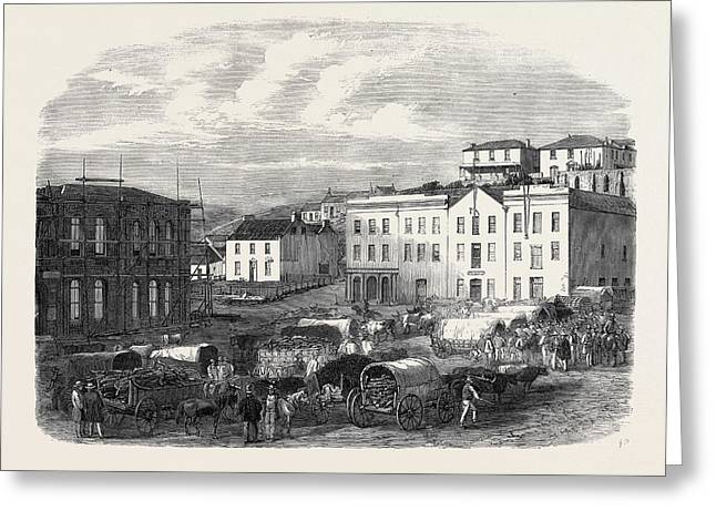 Morning Market At Port Elizabeth 1866 Greeting Card by English School