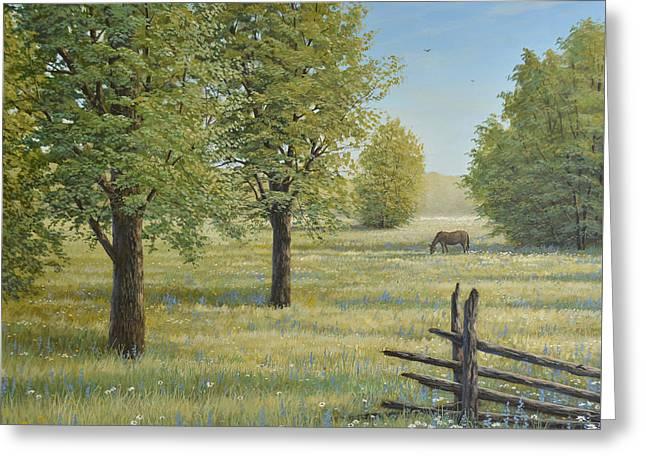 Morning Meadow Greeting Card by Jake Vandenbrink