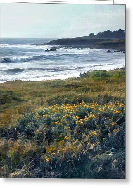 Morning Mist At Ocean Shoreline Greeting Card by Elaine Plesser