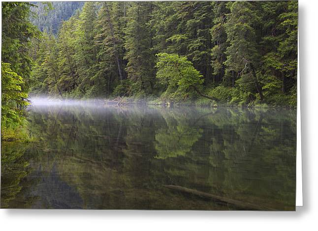 Morning Mist At Redoubt Greeting Card by Tim Grams